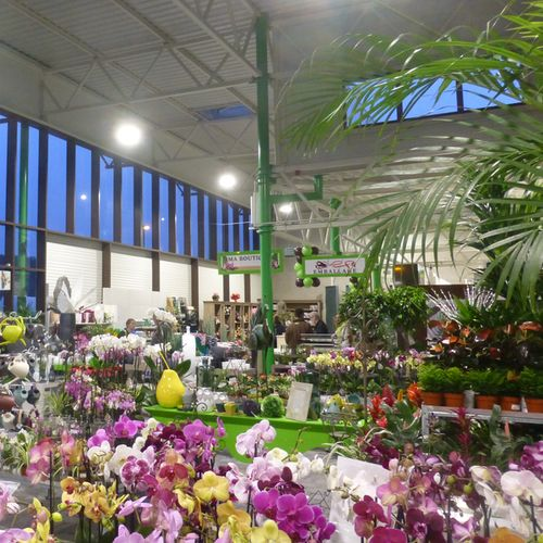 Garden Centers Lighting