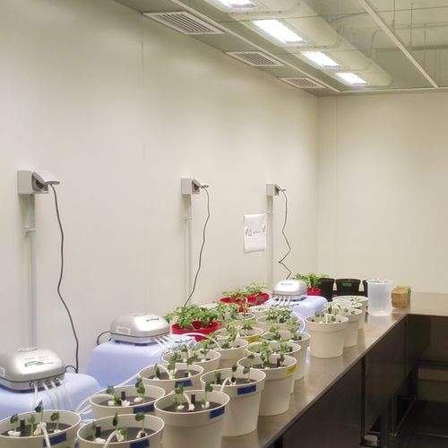 Indoor Horticulture LED Lighting for Research